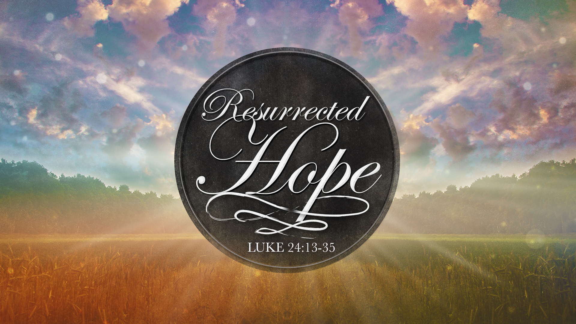 Resurrected-Hope_ws_t